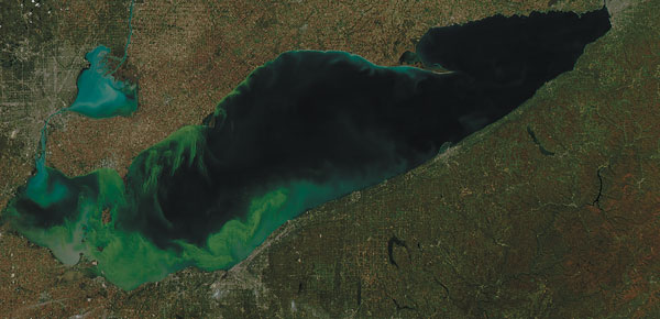 Lake Erie is one of our region's most treasured natural resources, but it is under threat from runoff, causing toxic algae blooms