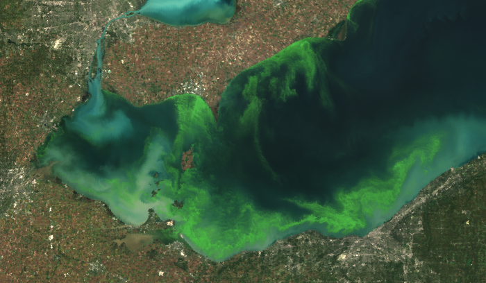 NOAA and friends predict another large algae bloom for Lake Erie by Jay Stevens