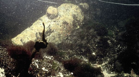 Divers Find Remains of Oliver Hazard Perry's Ship by Brian Graham