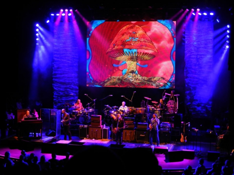 End of the Line for the Allman Brothers Band by Jim Wertz