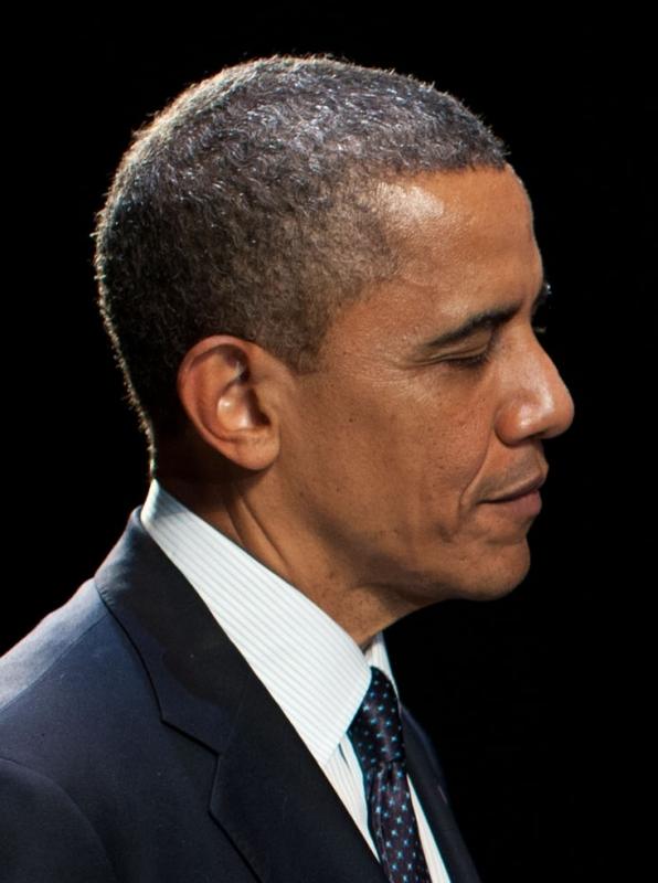 The Obama Trials by Jim Wertz