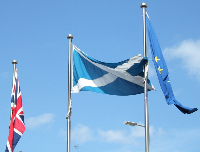 Scotland, The Brave...but Free? by Jim Wertz