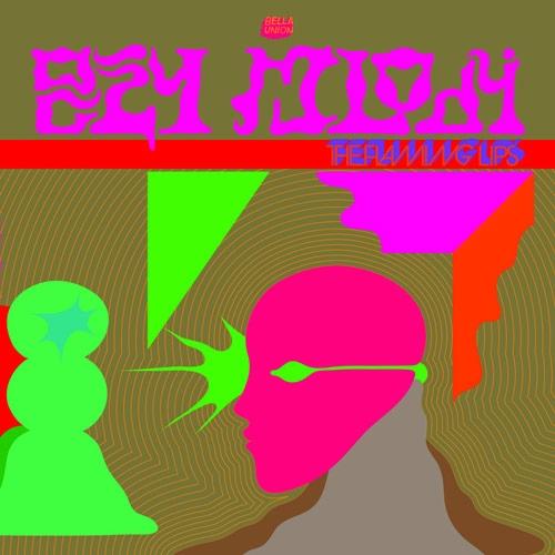 The Flaming Lips // Oczy Mlody by Nick Warren