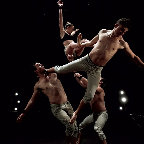 Gravity & Other Myths Brings Audiences Extremely Close to the Action by Miriam Lamey