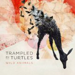 Trampled by Turtles // Wild Animals by Alex Bieler