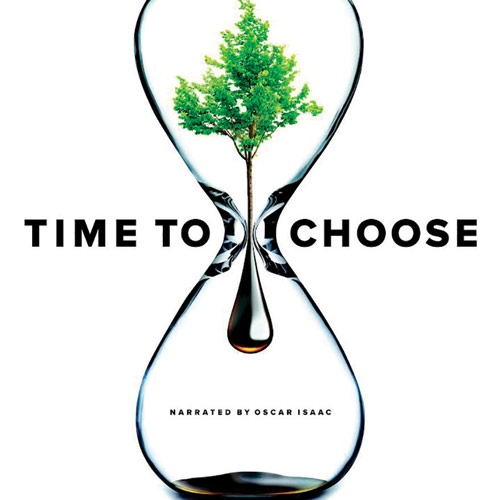 Time to Choose Makes Direct Connections between Local Actions and Global Impacts by Ti Sumner