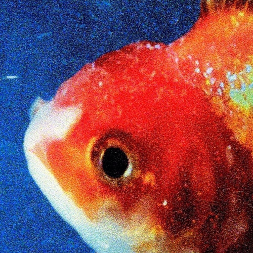 Vince Staples // Big Fish Theory by Aaron Mook