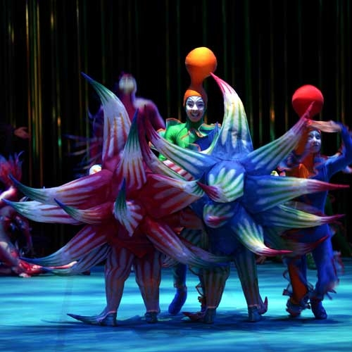 Cirque Du Soleil comes to Erie for 30 Year Anniversary by Tom Ricci
