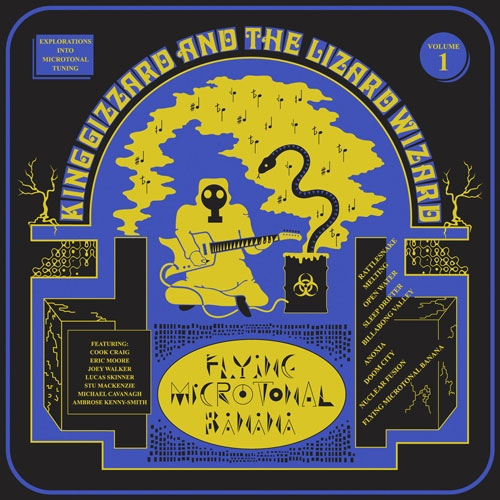 King Gizzard and the Lizard Wizard // Flying Microtonal Banana by Nick Warren