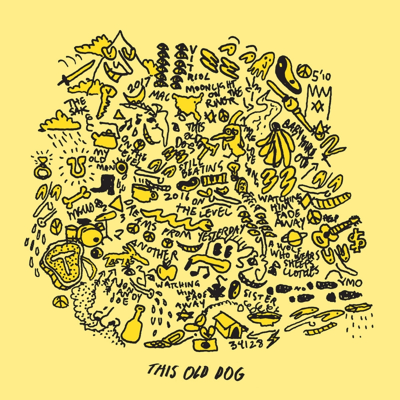 Mac Demarco // This Old Dog by Nick Warren
