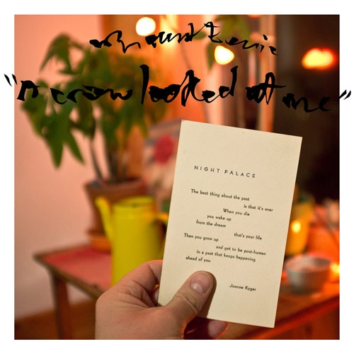 Mount Eerie // A Crow Looked At Me by Nick Warren